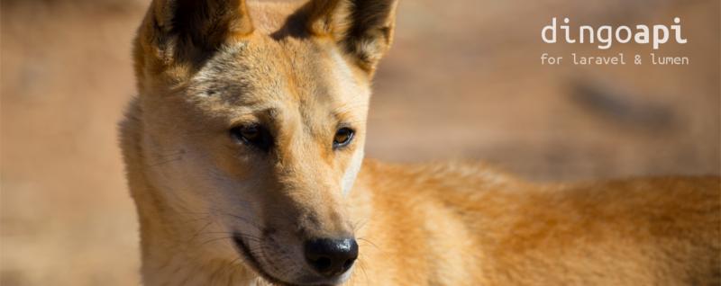 五分钟入门 Dingo API